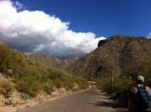 Sabino Canyon's Road to Blessings