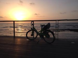 BTW, I still love bikes, biking, and photos of bikes. Photo courtesy of Stephanie Randall- Tel Aviv Beach