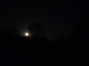 Moon May 2015
