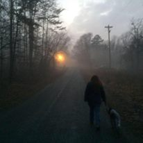 Feb 2015  Walking from behind
